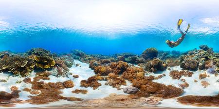 tiefe: Sphärische, 360 Grad, nahtloses Panorama der Dame Freitaucher Erkundung der Meeresboden mit Korallen