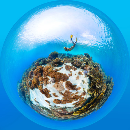 Panorama in the form of sphere of the lady freediver exploring the sea floor with corals