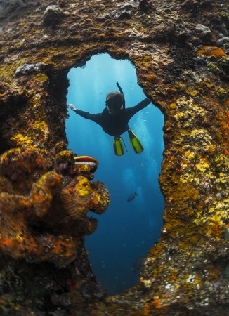 ship wreck: Free diver exploring the ship wreck in a tropical sea
