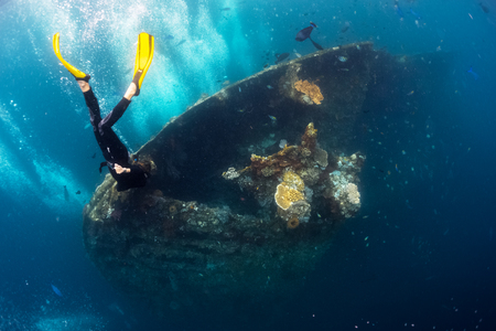 Free diver exploring the ship wreck in a tropical sea