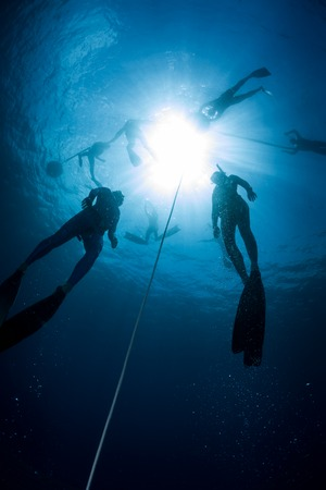 freediver: Free divers training in the tropical sea, Bali, Indonesia