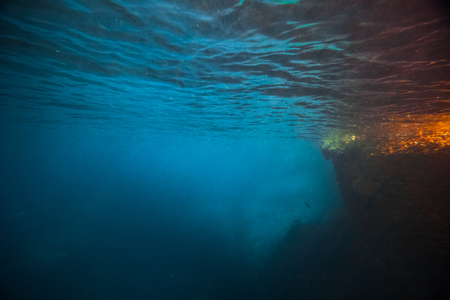 Onderwater schot van koraalrif Stockfoto