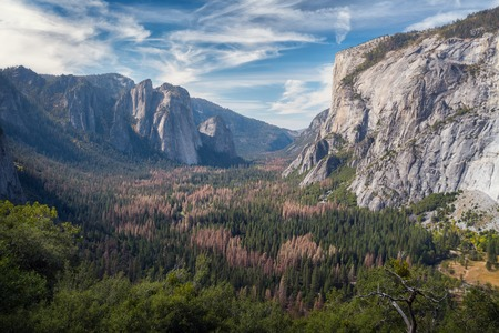 valley view: View of the valley of Yosemite National Park, USA