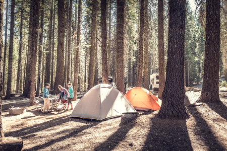 campamento: Acampar en el bosque de coníferas del Parque Nacional de Yosemite en el día, EE.UU.
