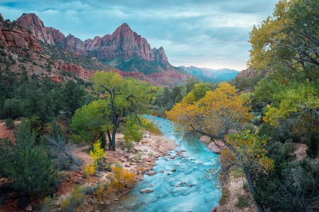 Small river it the Zion National Park, USA Imagens - 72891831