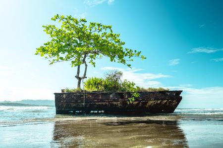 Remains of a ship at the Caribbean Sea Reklamní fotografie