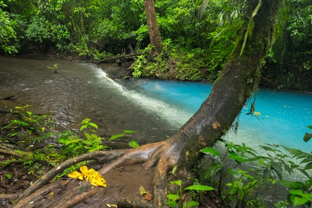 Two clear rivers with different acidity mix and create the river with turquoise water. Rio Celeste, Costa Rica Reklamní fotografie