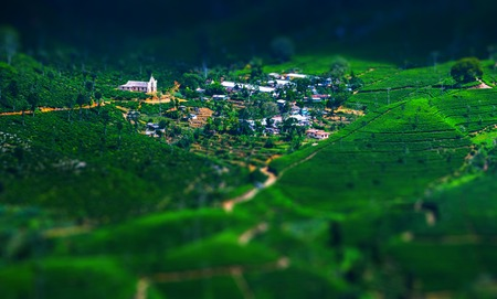 Valley with green hills with tea plantations and a small village. Sri Lanka