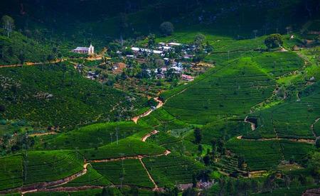 茶畑と小さな村の緑の丘が付いている谷。スリランカ 写真素材 - 85260927