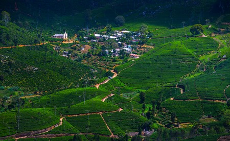 Valley with green hills with tea plantations and a small village. Sri Lanka Stock Photo - 85260927