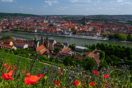 City skyline with river and bridge. Red flowers on the foreground. Wurzburg, Germany