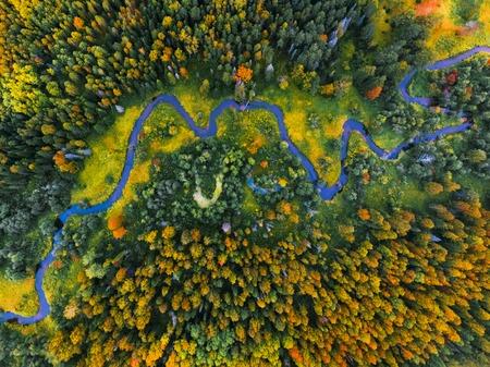秋の森と小さな川の航空写真 写真素材