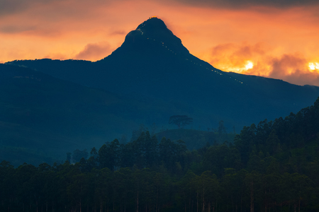 Mountain named Adams Peak during sunset. Sri Lanka