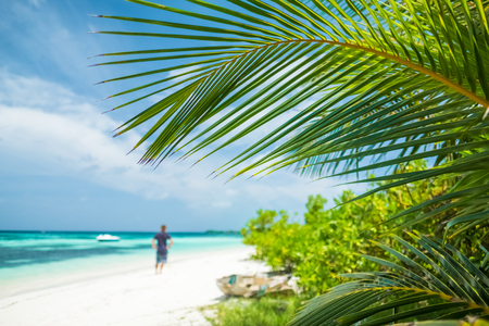 Man stands on the tropical beach. Focus on the palm tree leaf. Maldives