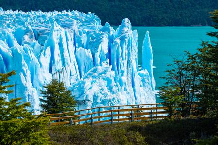 Perito Moreno glacier with trees, Argentina