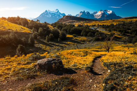 Mountains, yellow meadows and trail of Torres del Paine National Park, Chile 写真素材