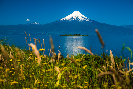 Volcan of Osorno and summer herbs on the foreground. Chile 写真素材