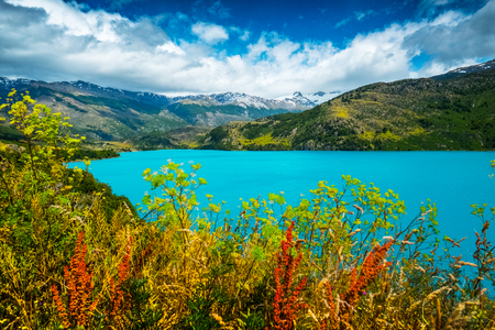 Lake with turquoise water and red flowers on the foreground. Lake named Lago Tranquilo situated in the valley of Exploradores, Chile