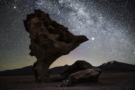 Rock formation named Arbol de Piedra at night with starry sky on the background. Bolivia. Picture contains some noise due to high ISO. Banco de Imagens