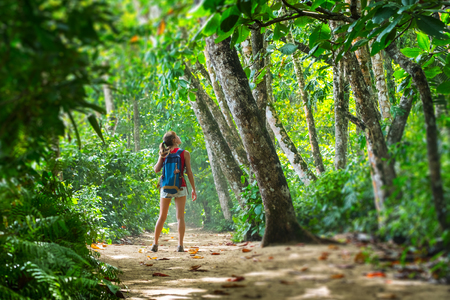 Excursionista joven se encuentra en el exuberante bosque tropical y mira los árboles. Efecto de cambio de inclinación aplicado en los bordes Foto de archivo