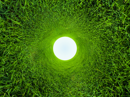 Meadow with green grass in a shape of a hole Banco de Imagens
