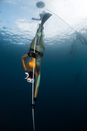 Woman freediver in the golden wetsuit descends along the rope in an open sea