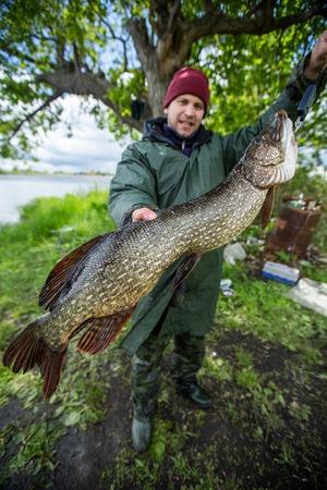 Amateur fisherman holds trophy 5.6 kg (12.3 lb) pike fish (Esox lucius)