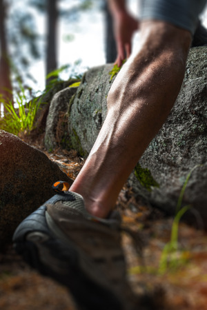 Muscled close up shot of the leg of a trail running athlete in a forest. Tilt shift effect applied