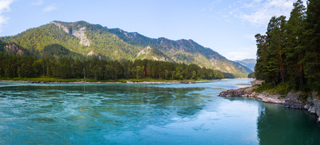 Panorama of the rapid river of Katun, Altai Republic, Russia 스톡 콘텐츠