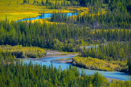 The river of Katun. Altai Republic, Russia