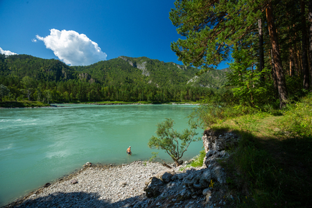 Man going to bath in the rapid river of Katun at sunny day, Altai Republic, Russia