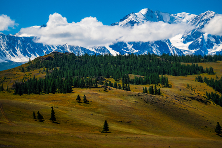 Snow capped mountains and hills with pine trees in Altai Republic, Russia
