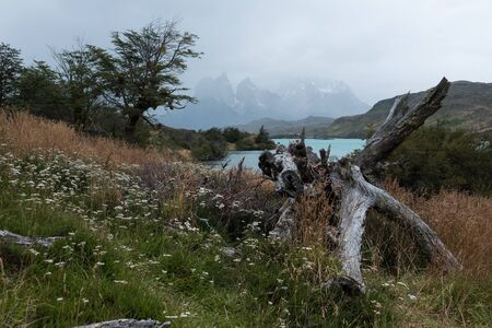 Torres del Paine National Park during the rainy weather with Cordillera Paine and Cuernos Towers barely visible on the horizon. Chilean Patagonia