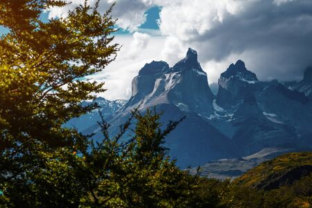 Torres del Paine National Park with snow capped mountains (Cordillera Paine) and green trees on the foreground. Chile Stock fotó