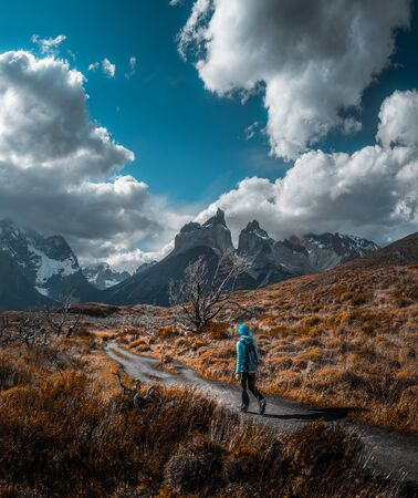 Woman hiker walks on the trail among the burnt trees and dry grass with snow capped mountains on the background. Torres del Paine National Park, Chilean Patagonia.