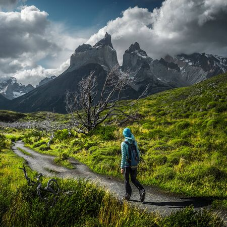 Woman hiker walks on the trail among the burnt trees with snow capped mountains on the background. Torres del Paine National Park, Chilean Patagonia. Stock fotó