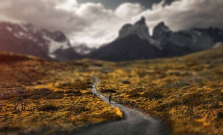 Woman hiker walks on the trail in Torres del Paine National Park, Chilean Patagonia. Tilt shift effect applied