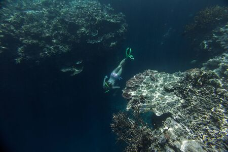 Girl snorkeling in the tropical sea over the coral reef and dives deep along the reef wall