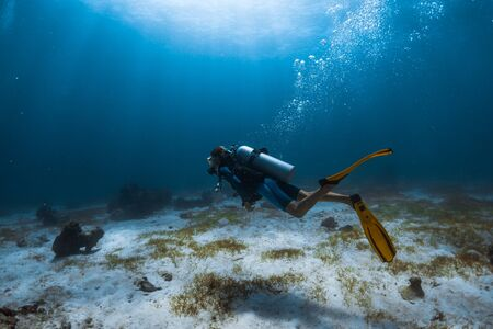 Woman scuba diver swims alone underwater over the sea bottom covered with a sea weed