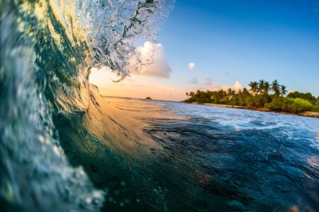 Ocean wave breaks over the coral reef at sunset. Very shallow depth of field with focus on the some parts of wave only