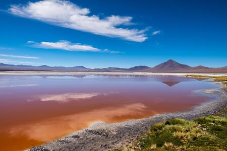 Salty lake with orange water (color as is, natural, without any color correction) named Laguna Colorada in Bolivian Altiplano, Bolivia