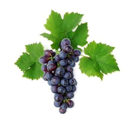 Grape cluster with leaves, isolated on white background