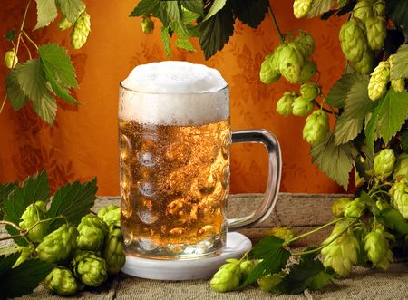 hop plant: Cold beer and hops