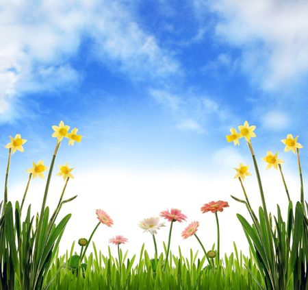 Spring scenery Stok Fotoğraf