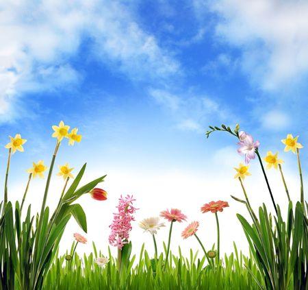 Spring garden scenery