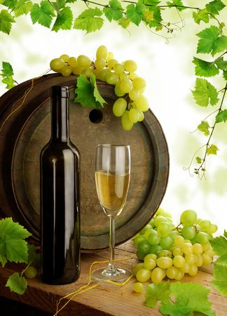 White wine still life with grapevine frame Stock Photo - 6508831