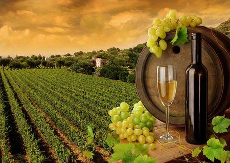 Wijn en wijn gaard in de zons ondergang