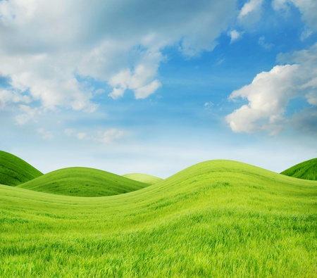Idílico paisaje de primavera con la hierba verde fresca