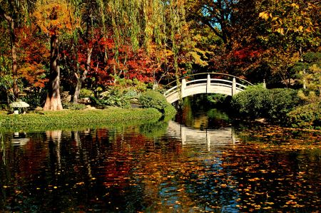 A Japanese Garden filled with Fall colors and foliage photo
