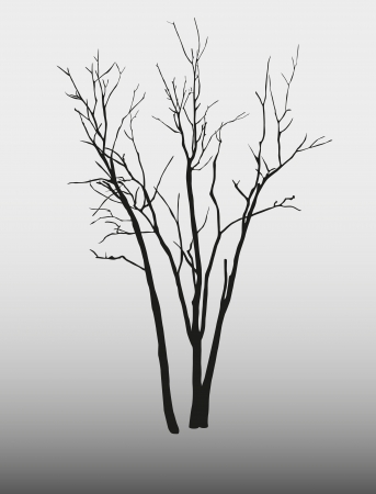winter tree: tree silhouette on a gray background